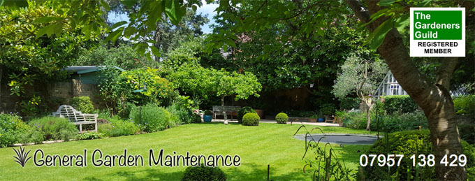 General Garden Maintenance website