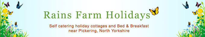 Rains Farm Holidays website