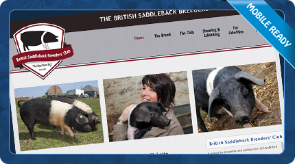 British Saddleback Pig Breeders Club